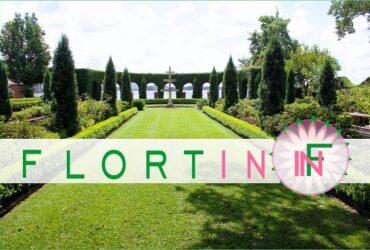 Hortikultura / Pejzazna Arhitektura / Cvetna Dekoracija / Uredjenje Baste