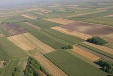 Prodajem zemljiste u selu Veric-Kosovo