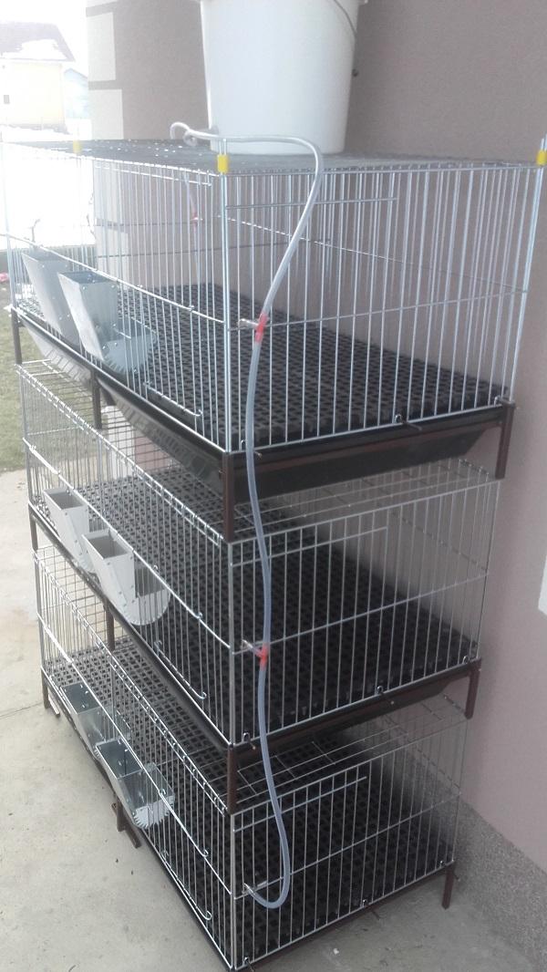 Kavezi za pilice i zeceve – Novi Sad