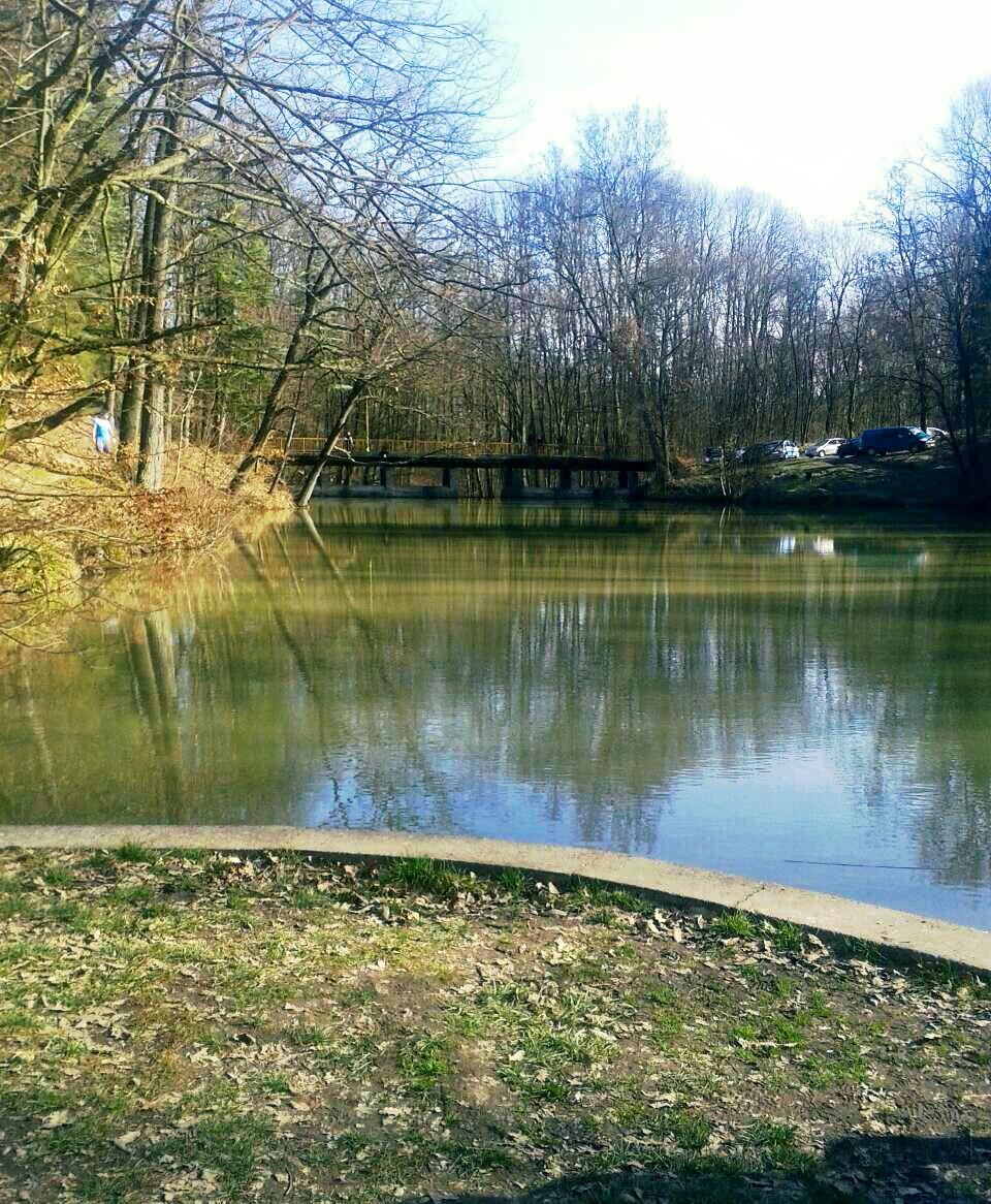 Vikendica na jezeru kod Beograda Avala