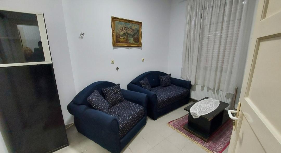Izdajem dvosoban stan u centru Nisa