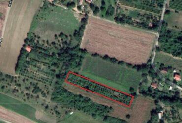 Dve parcele u Petrovaradinu, Zanoš