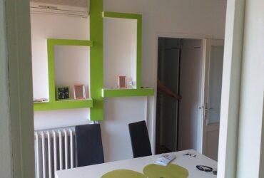 Izdajem dvosoban stan u centru Nisa, Nade Tomic