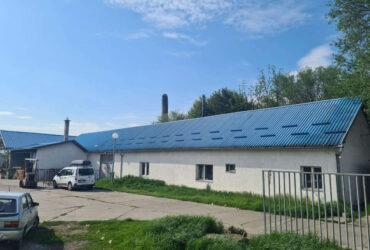 Prodajem HALU u Srbobranu