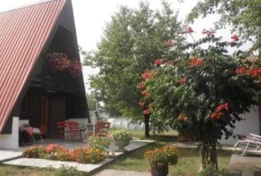 Zakup kuće na Zlatiboru, najbolje za porodice ili društvo