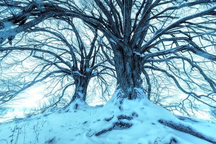 Prva žrtva ledenog talasa u Srbiji