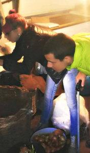 Akcija uklanjanja i zbirnjavanja zmije u podrumu kuće u Trupalu kod Niša