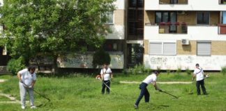 Niški penzioneri svake subote uređuju javne zelene površine