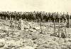 Zaboravljena srpska vojna groblja: Pronađite grob svog pretka poginulog na Solunskom frontu