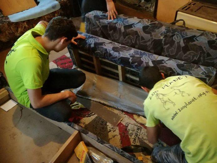 Akcija uklanjanja i zbrinjavanja zmije u porodičnoj kući u Boljevcu; Foto: Udruženje ZOO Planet