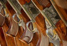 Vatreno oružje; Foto: Pixabay
