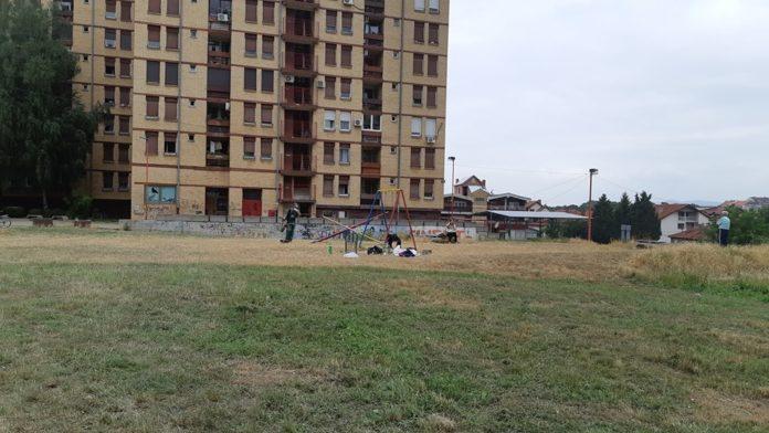 Radna akcija na Delijskom visu; Foto: JKP