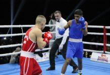 A. Vučićević u ringu