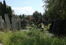 Novo groblje Niš