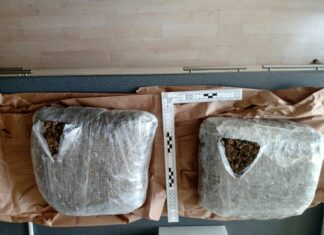 Zaplenjeno 2 kg marihuane