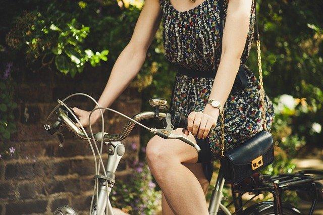 Međunarodni dan bicikla