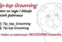 tip-top grooming