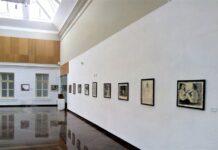 fotka iz galerije