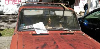 Akcija uklanjanja havarisanih vozila