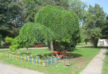 đoletov park