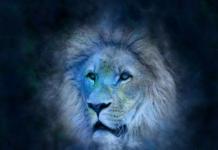lav horoskop